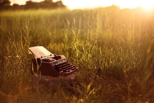 typewriter-field