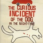 The Curious Incident of the Dog in the Night-Time (book review)
